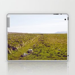 Sheeps in Iceland Laptop & iPad Skin