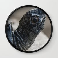 turtle Wall Clocks featuring Turtle by MehrFarbeimLeben