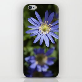Color Me Blue iPhone Skin