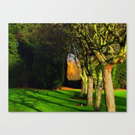 Winter archway in the trees Canvas Print