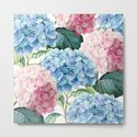 Pink Blue Hydrangea by julianarw