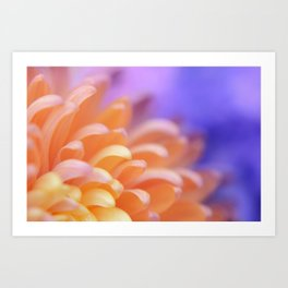 Flower Sunrise | cute pastel flower, peach flowers, orange floral pattern, pretty petals, macro Art Print