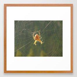 Spinning Her Web Framed Art Print
