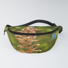 Beautiful floral stem rising up against a green and blue bokeh background Fanny Pack