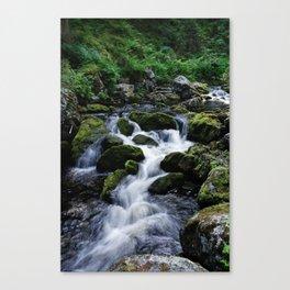 Jämtland, Sweden Canvas Print