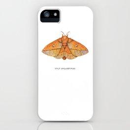 Spiny Oakworm Moth (Anisota stigma) iPhone Case