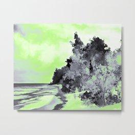 Agender Pride Forest, Shore and Sky Landscape Metal Print