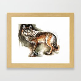 Totem Mexican Wolf ( Watercolor ) Framed Art Print