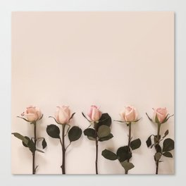 Just Rosey Canvas Print