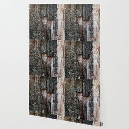 Tree Bark close up Wallpaper