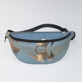 Hey, Margaret- Try This Fanny Pack