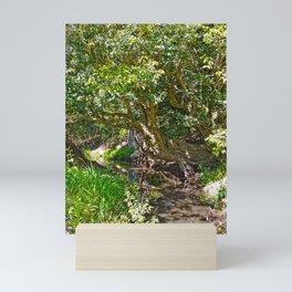Wise old tree Mini Art Print