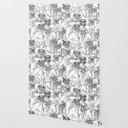 English Bulldogs Wallpaper