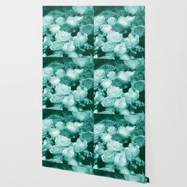 Teal Roses Wallpaper