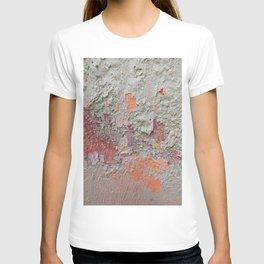 017 T-shirt