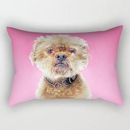 Super Pets Series 1 - Super Cosmo 2 Rectangular Pillow