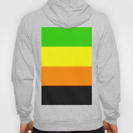 Aromantic Pride Flag Hoody