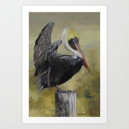 Golden Sunrise Pelican Art Print
