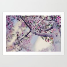 A thousand blooms Art Print