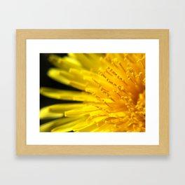 *Sun Burst Framed Art Print
