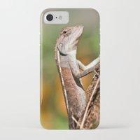 lizard iPhone & iPod Cases featuring lizard by Anja Ergler