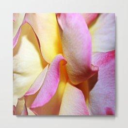 Peace Rose Petals Metal Print
