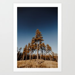 Pointing to the Sky Art Print