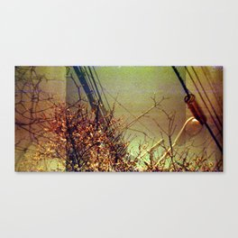 Spring into Now Canvas Print