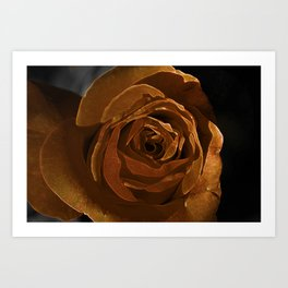september gold Art Print