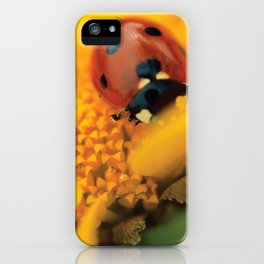 Ladybird, macro photography, still life, fine art, nature photo, romantic wall print iPhone Case