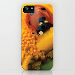 Ladybird, macro photography, still life, fine art, nature photo, romantic wall print iPhone Case