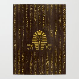 Golden Egyptian Sphinx and hieroglyphics on wood Poster