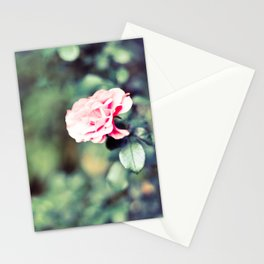 The flowers bloom for You Stationery Cards