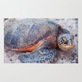 Cute, fun Hawaii sea turtle relaxing on the beach close-up photo Rug