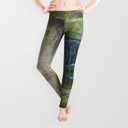 Perfect Day at the Pond Leggings