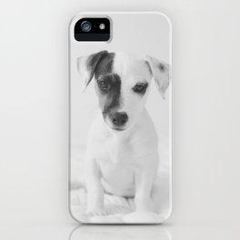 Cute puppy iPhone Case
