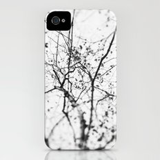 looking up . v Slim Case iPhone (4, 4s)