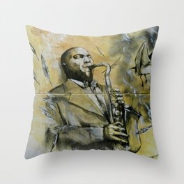 Classic Material Series - Feathers (c.2006) Throw Pillow