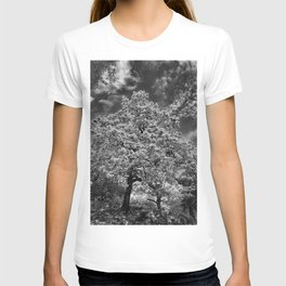 Tree in Killarney T-shirt