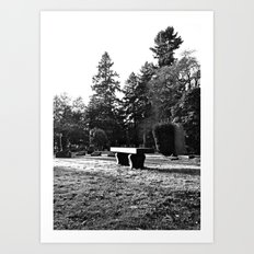 Cemetery solitude Art Print