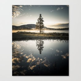 The Lonely Tree Canvas Print