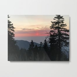 Sunset above the trees Metal Print