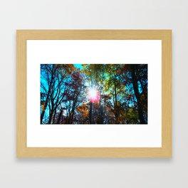 orb. Framed Art Print