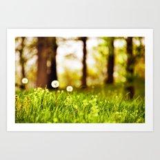 Dreamy Dandelions Art Print