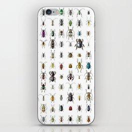 Beetlemania / Get your entomology on! iPhone Skin