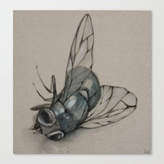 Fly Canvas Print