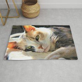 Kitty Light by Reay of Light Rug