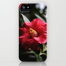 Intangible iPhone Case