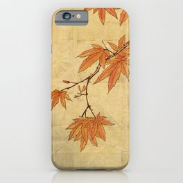 Asiafoldantique iPhone Case