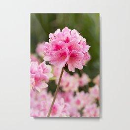 Flower Ball Metal Print